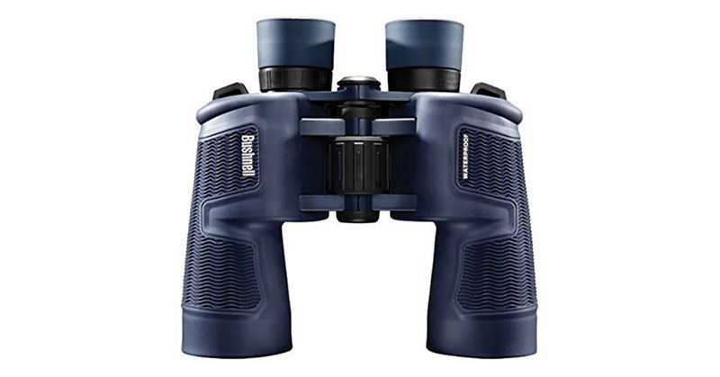 best day and night vision binoculars
