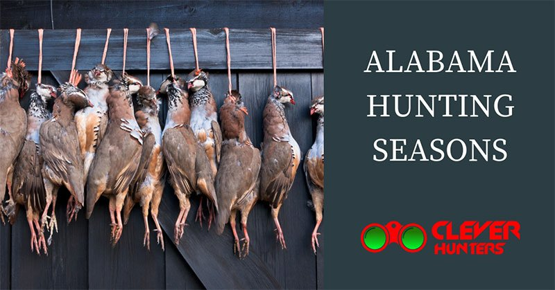 alabama hunting seasons
