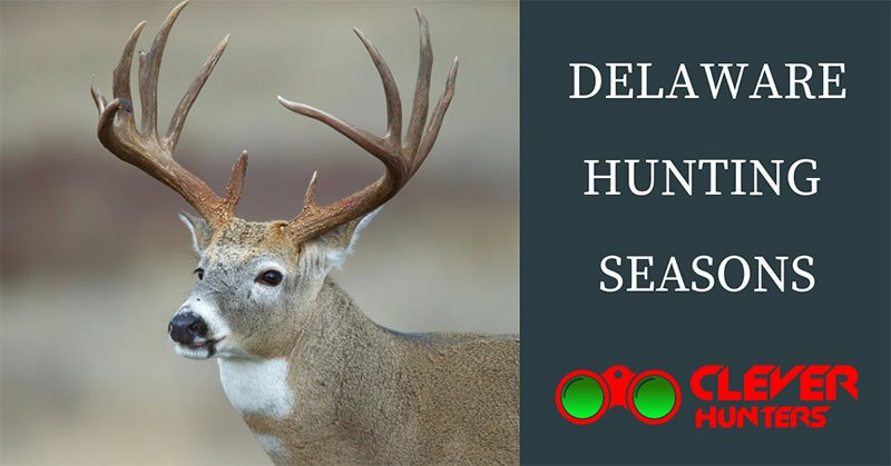 Delaware Hunting Seasons