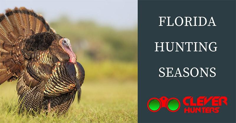 Florida Hunting Seasons