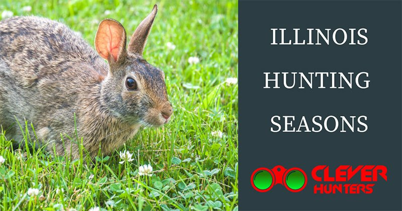 Illinois Hunting Seasons