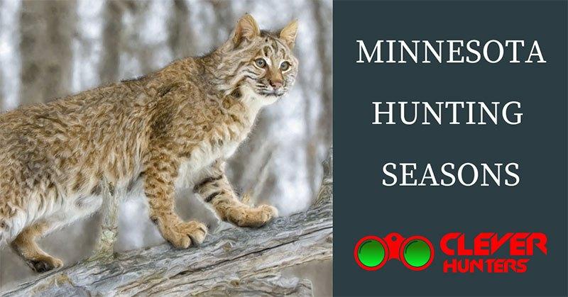 Minnesota Hunting Seasons