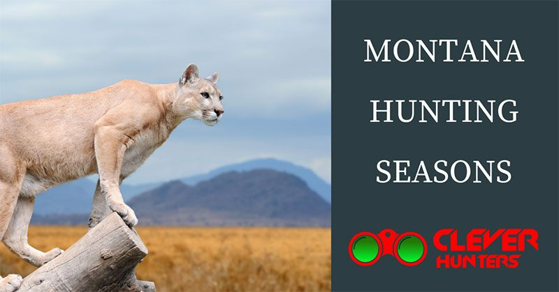 Montana Hunting Seasons