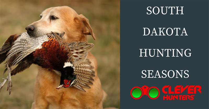 South Dakota Hunting Seasons