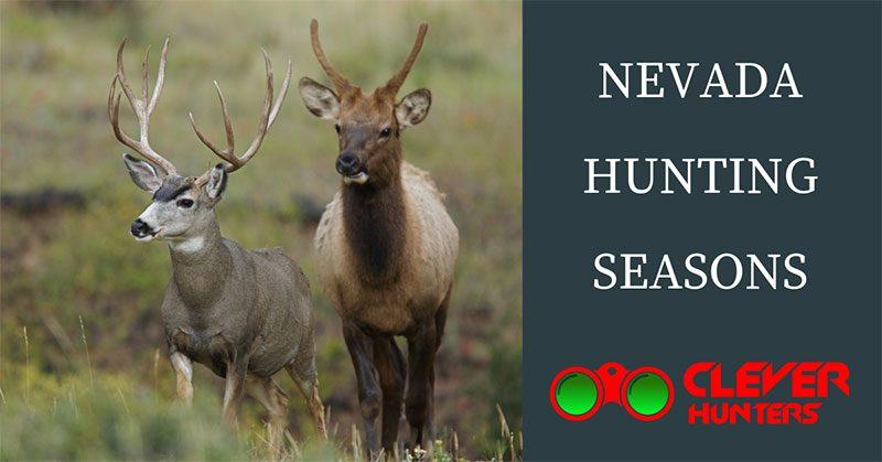 Nevada Hunting Seasons