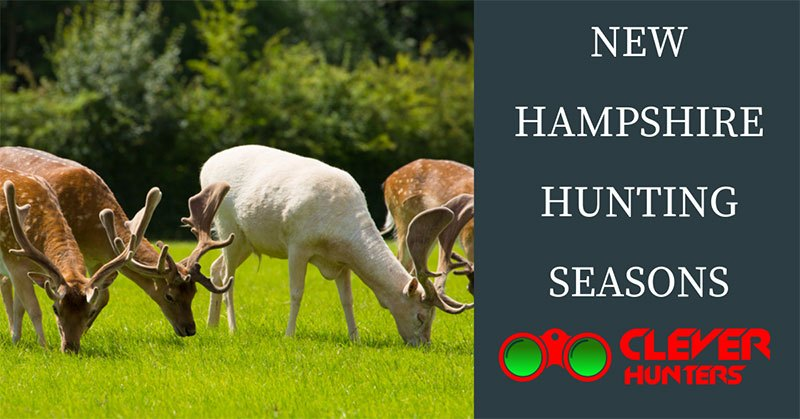 New Hampshire Hunting Seasons