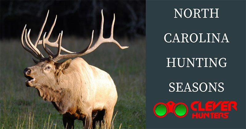 North Carolina Hunting Seasons