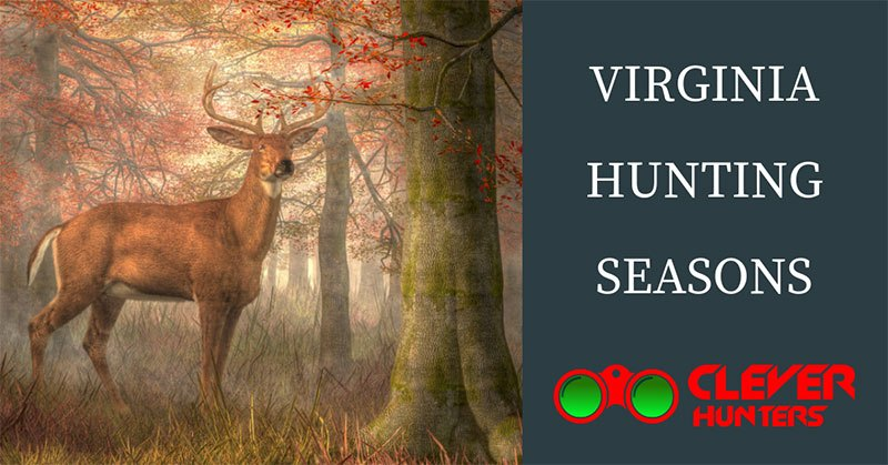 Virginia Hunting Seasons