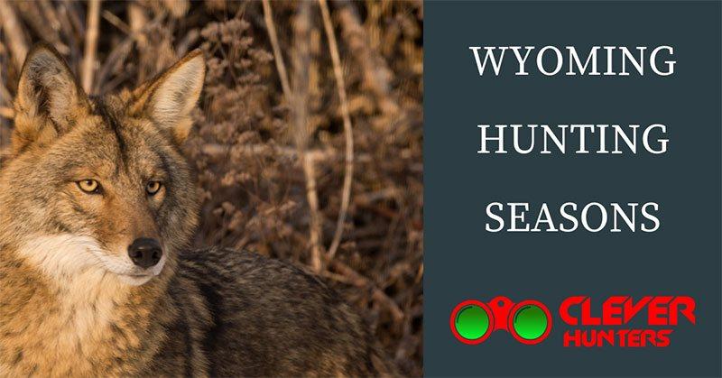 Wyoming Hunting Seasons
